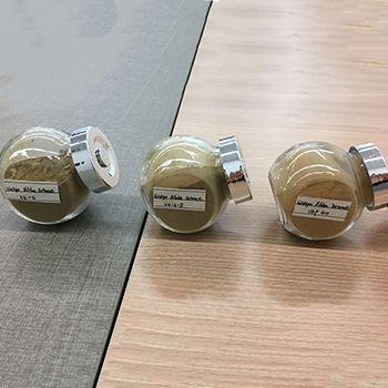 Ginkgo biloba extract CAS 90045-36-6